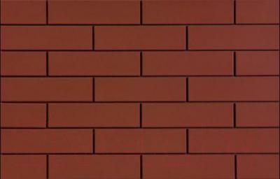 Плитка Cerrad Rot (245x65)