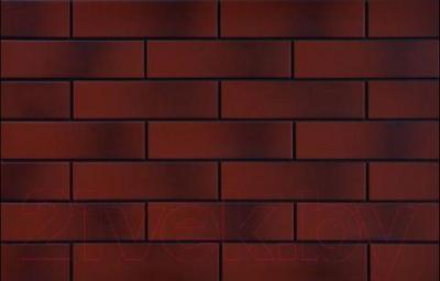 Плитка Cerrad Contry Wisnia (245x65)