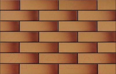 Плитка Cerrad Miodowa глазур. (245x65)