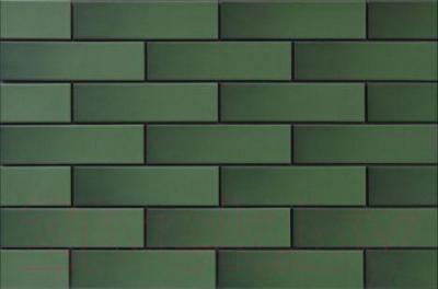 Плитка Cerrad Zielone глазур. (245x65)