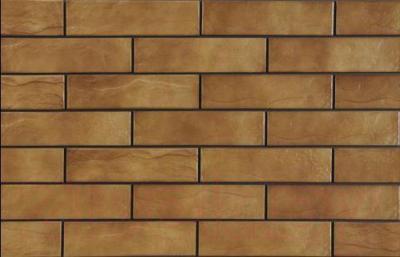 Плитка Cerrad Arizona Рустик (245x65)