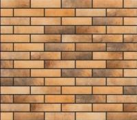 Плитка Cerrad Loft Brick Curry (245x65) -