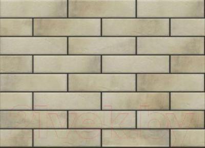 Фасад клинкерный Cerrad Retro Brick Salt (245x65)