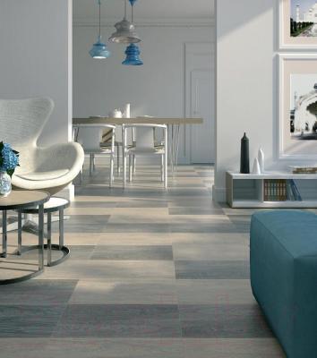 Плитка для пола Kerama Marazzi Палисандр SG210800N (600x300, светло-серый)