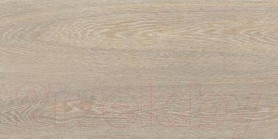 Плитка Kerama Marazzi Палисандр SG210900N (600x300, бежевый)