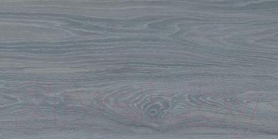 Плитка Kerama Marazzi Палисандр SG211000N (600x300, серый)