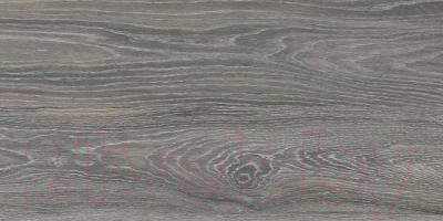 Плитка для пола Kerama Marazzi Палисандр SG211100N (600x300, коричневый)