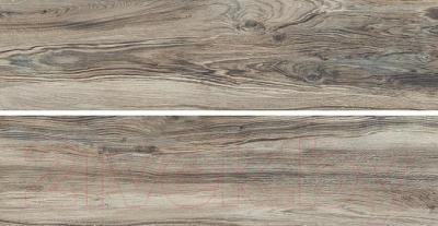 Плитка Kerama Marazzi Дувр SG702100R (800x200, коричневый)