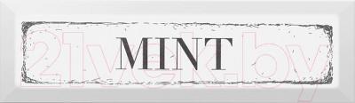Декоративная плитка для кухни Kerama Marazzi Гамма Mint NT\B38\2882 (285x85, черный)