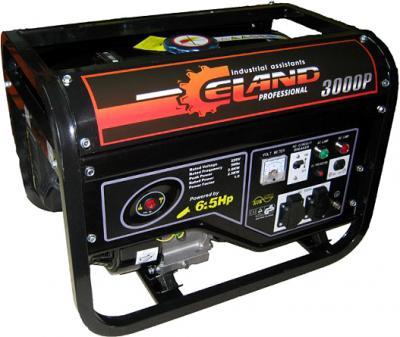 Бензиновый генератор Eland 3000P - общий вид