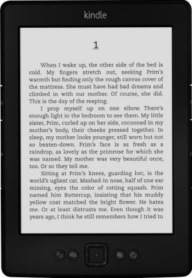 Электронная книга Amazon Kindle New (2012) Black + Оригинальный чехол - общий вид