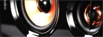 Мультимедиа акустика Top Device TDM-500 (черный) - динамик