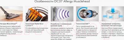 Пылесос Dyson DC37 Allergy Musclehead