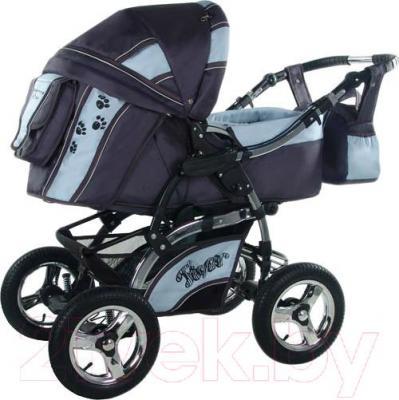 Детская универсальная коляска Bebetto Tiger (D2LC3R/H1) (88) - общий вид