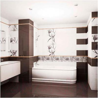 Плитка для стен ванной Ceradim Black (450x250)