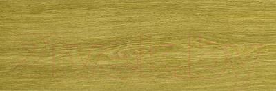 Плитка Italon Эссэнс Нат (590x195)