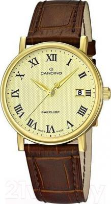 Часы мужские наручные Candino C4489/4