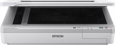 Планшетный сканер Epson WorkForce DS-50000 - фронтальный вид (открытый)