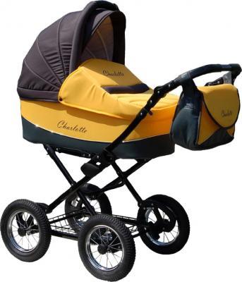 Детская универсальная коляска Expander Charlotte 2 в 1 (70) - общий вид