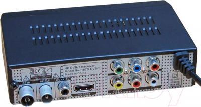 Тюнер цифрового телевидения Skytech 157G DVB-T2 - вид сзади