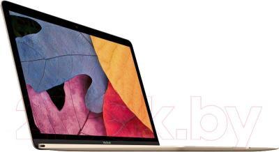 Ноутбук Apple MacBook / MK4N2RU/A