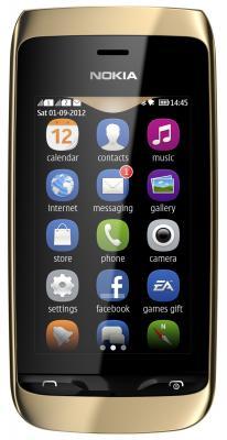 Мобильный телефон Nokia Asha 308 Golden Light - общий вид