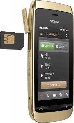 Мобильный телефон Nokia Asha 308 Golden Light - карта памяти