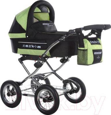 Детская универсальная коляска Bebetto Expander P2LC3R (126) - общий вид