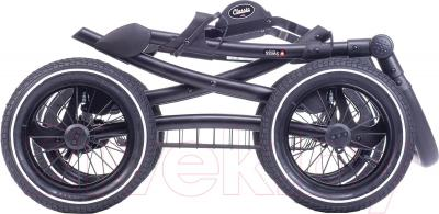 Детская универсальная коляска Anex Classic 2 в 1 (01)
