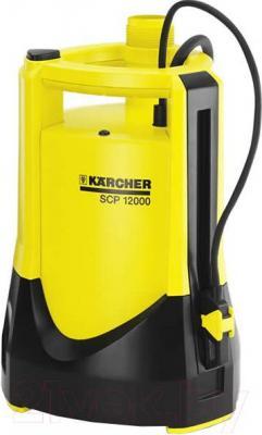 Дренажный насос Karcher SCP 12000 (1.645-168.0) - общий вид