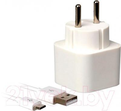 Сетевое зарядное устройство SmartBuy SBP-2150