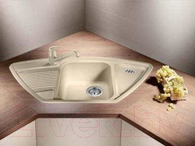 Мойка кухонная Blanco Classic 9 E (521341)