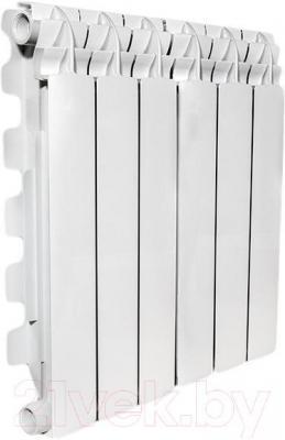 Радиатор алюминиевый Fondital Mytico A3 500/100 (V630034)