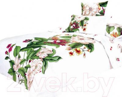 Комплект постельного белья Arya Сатин Печатное Nina / PB200X220Nn (200x220)
