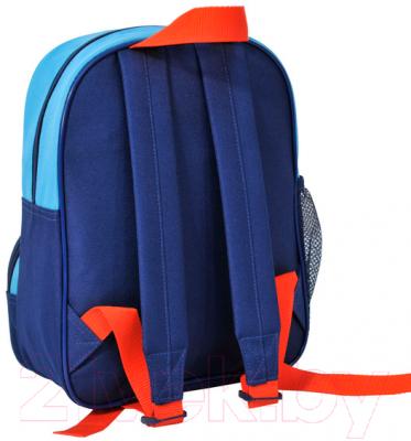 Школьный рюкзак Paso 14-305H