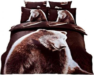 Комплект постельного белья Arya Сатин Печатное Cool Bear / PB200X220CB (200x220)