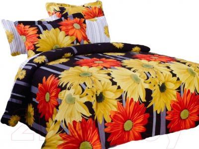 Комплект постельного белья Arya Сатин Печатное Santa / PB200X220San (200x220)