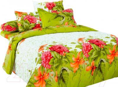 Комплект постельного белья Arya Печатное Belinda / PB200X220Bel (200x220)