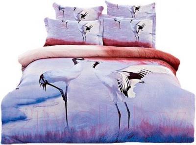 Комплект постельного белья Arya Печатное Dakota / PB200X220Dak (200x220)