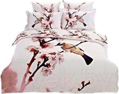 Комплект постельного белья Arya Печатное Kayce / PB200X220Ka (200x220)