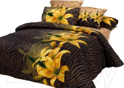 Комплект постельного белья Arya Печатное Renata / PB200X220Ren (200x220)