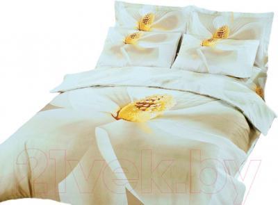 Комплект постельного белья Arya Печатное Cicek / PB200X220Ci (200x220)