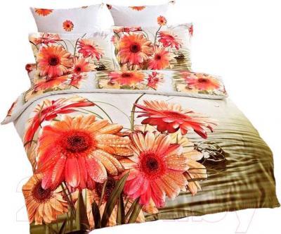 Комплект постельного белья Arya Печатное Makayla / PB200X220Maka (200x220)