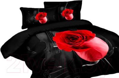 Комплект постельного белья Arya Сатин Печатное Violin Black / PB160X220ViB (160x220)