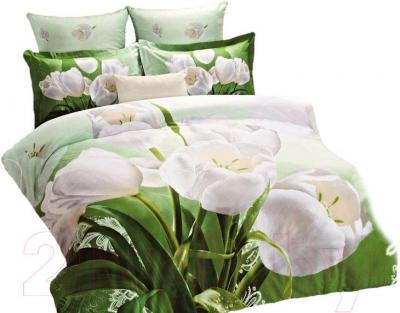 Комплект постельного белья Arya Сатин Печатное 3D White Tulip / PB200X220WhT (200x220)