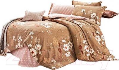 Комплект постельного белья Arya Печатное Pvc Skander / PB200X220Skan (200x220)