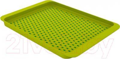 Поднос Joseph Joseph Grip Tray 70081 (зеленый)