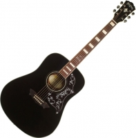 Акустическая гитара Washburn WD2014LTDB -