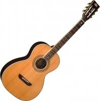 Акустическая гитара Washburn WP26SNS -