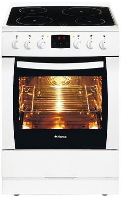 Кухонная плита Hansa FCCW67034010 - общий вид